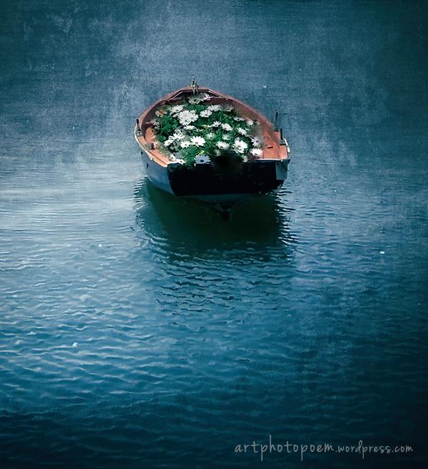 boatflowers